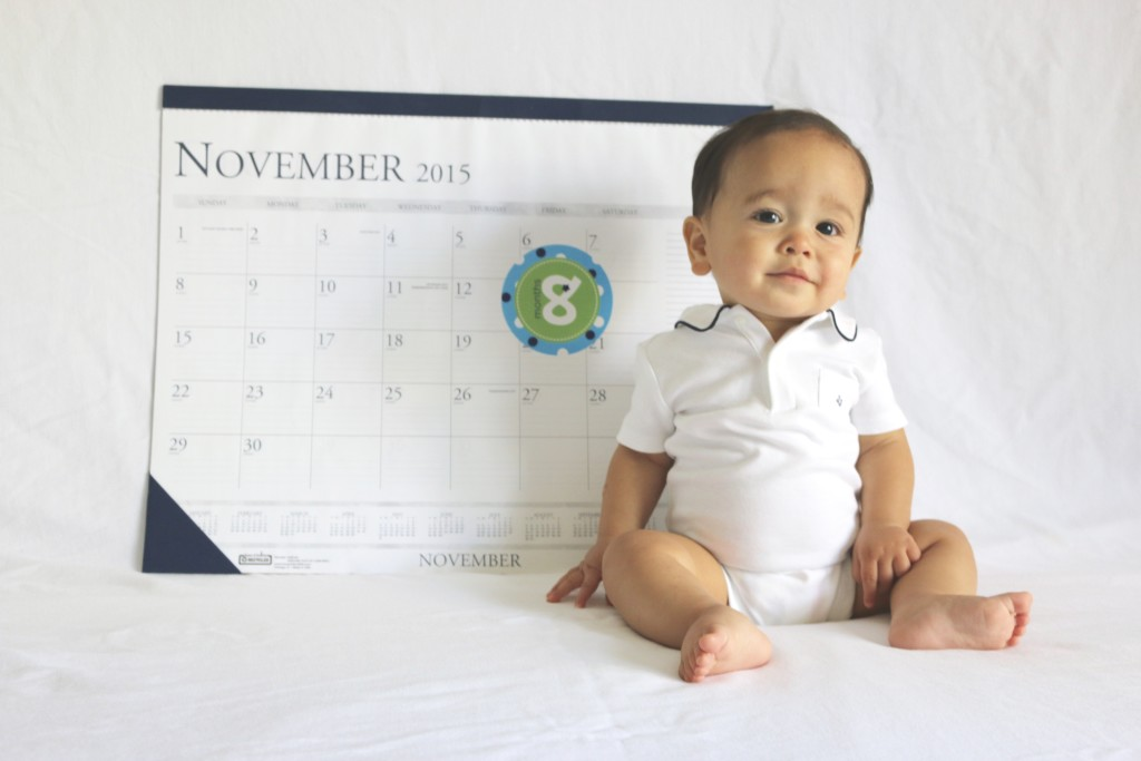 8 month baby